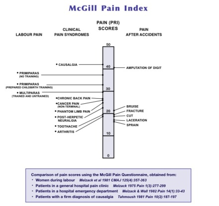 mcgill-pain-index-with-academic-citations