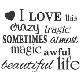 0000746_i-love-this-crazy-life_265