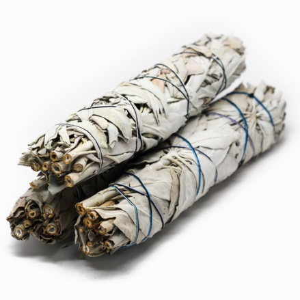White Sage- Image credit- Hoodwitch